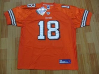 <img src='/pic/Browns--2318-Donte-Stallworth-Orange-Stitched-NFL-Jersey-1258-25721.jpg' width=400>